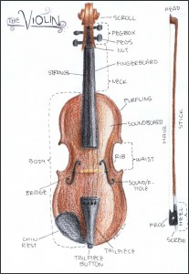 Parts-of-the-Violin-full-page